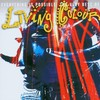 Living Colour, Everything Is Possible: The Very Best of Living Colour