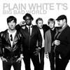 Plain White T's, Big Bad World
