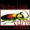 The Jesus Lizard, Shot