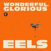 Eels, Wonderful, Glorious