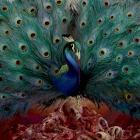 Opeth, Sorceress