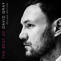 David Gray, The Best Of David Gray