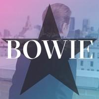 David Bowie, No Plan
