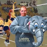 Prof, Liability