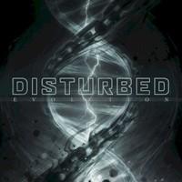 Disturbed, Evolution