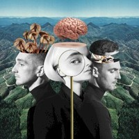 Clean Bandit, What Is Love?