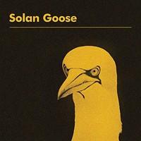 Erland Cooper, Solan Goose