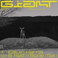 Calvin Harris & Rag'n'Bone Man, Giant
