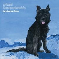 Advance Base, Animal Companionship
