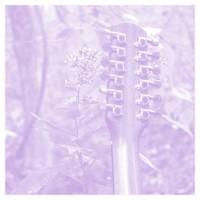Sarah Louise, Solo Acoustic Vol. 12