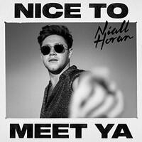 Niall Horan, Nice To Meet Ya