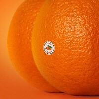 Emotional Oranges, The Juice: Vol. II