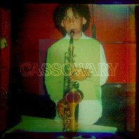 Cassowary, Cassowary