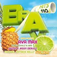 Various Artists, Bravo Hits, Vol. 110