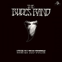 The Budos Band, Long In The Tooth
