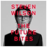 Steven Wilson, The Future Bites