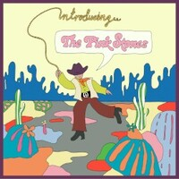 The Pink Stones, Introducing... The Pink Stones