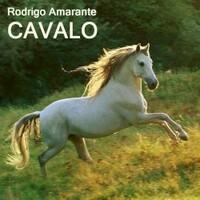 Rodrigo Amarante, Cavalo