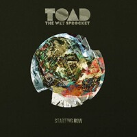 Toad the Wet Sprocket, Starting Now