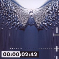 Front 242, Angels Versus Animals