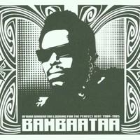 Afrika Bambaataa, Looking for the Perfect Beat 1980-1985