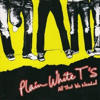 Plain White T's, All That We Needed