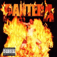 Pantera, Reinventing the Steel