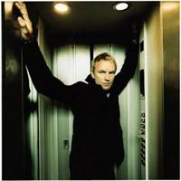 Sting, Brand New Day
