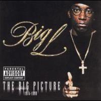 Big L, The Big Picture