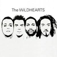 The Wildhearts, The Wildhearts