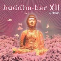 Ravin, Buddha-Bar XII