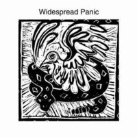 Widespread Panic, Widespread Panic
