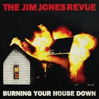 The Jim Jones Revue, Burning Your House Down
