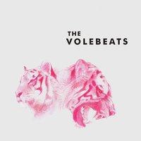 The Volebeats, The Volebeats