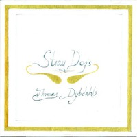 Thomas Dybdahl, Stray Dogs