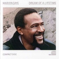 Marvin Gaye, Dream of a Lifetime