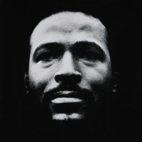 Marvin Gaye, Vulnerable