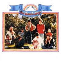 The Beach Boys, Sunflower