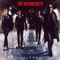 The Wildhearts, Endless, Nameless