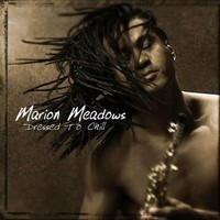 Marion Meadows, Dressed to Chill