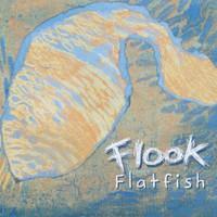 Flook, Flatfish