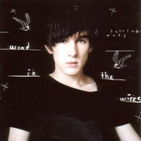 Patrick Wolf, Wind in the Wires