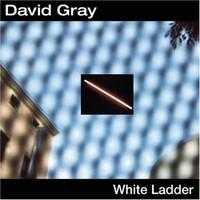 David Gray, White Ladder