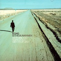 Echo & The Bunnymen, What Are You Going to Do With Your Life?