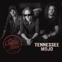 CD album cover of Tennessee Mojo