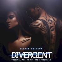 Various Artists, Divergent