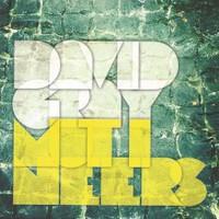 David Gray, Mutineers
