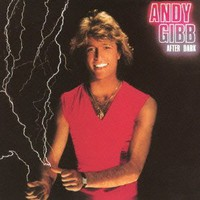 Andy Gibb, After Dark