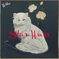 Wilco, Star Wars