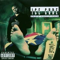 Ice Cube, Death Certificate